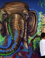 Geração grafite