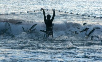 Pesca da tainha é tema de mostra fotográfica no Campus Itajaí