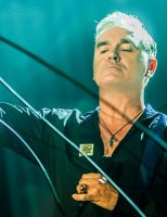Caro Morrissey…