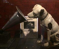 BC tem seu Museu da Imagem e do Som