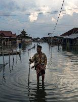 Getty Images e Climate Visuals premiam fotojornalistas