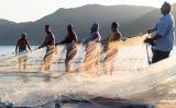 Intercâmbio de rede de pesca artesanal?
